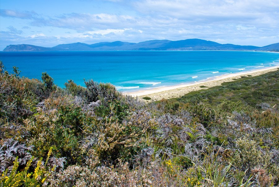 3 Day Guided Bruny Island Walk