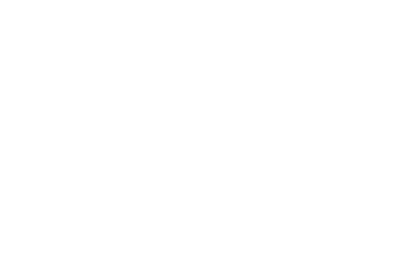 blue mountain business