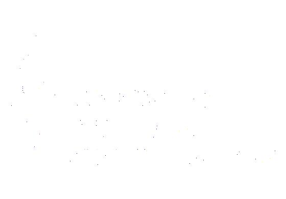 2013 winner