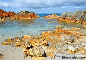 bay-of-fires-beach-image