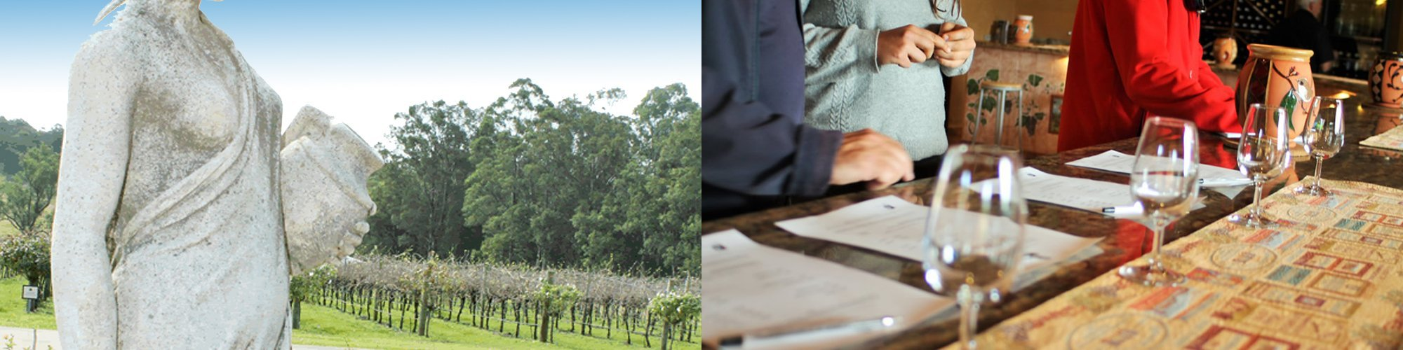Hunter Valley Day Tour by Private Car