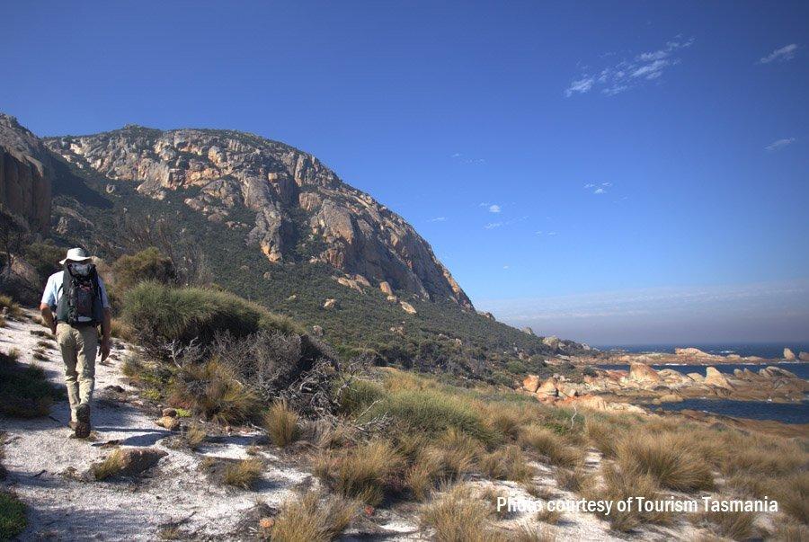 Walking track on Flinders Island
