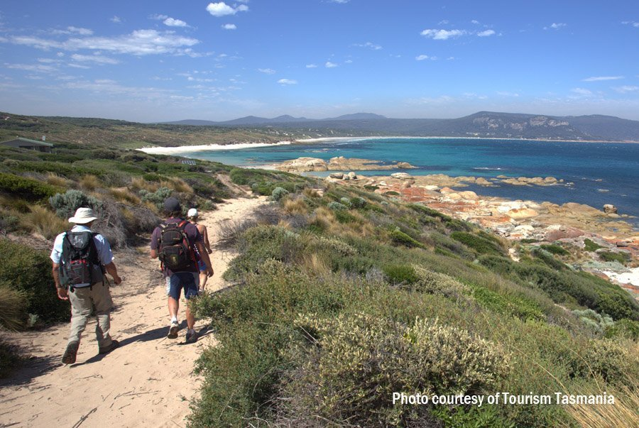 Walking track on Flinders Island