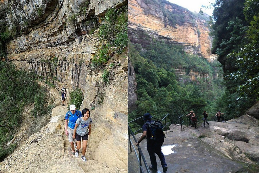Spectacular Blue Mountains walk