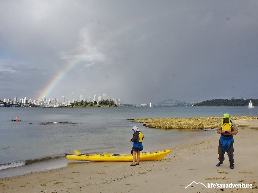 Guided kayaking tours on Sydney Harbour