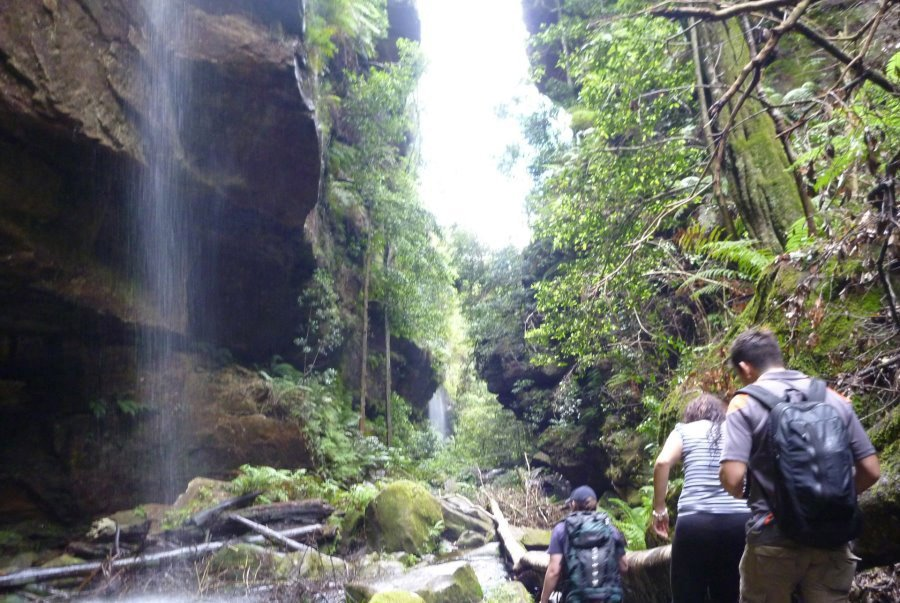 Blue Mountains Self Guided Walk