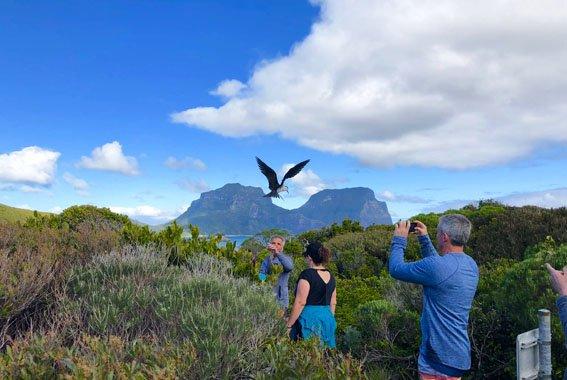 6 Day Lord Howe Island walk