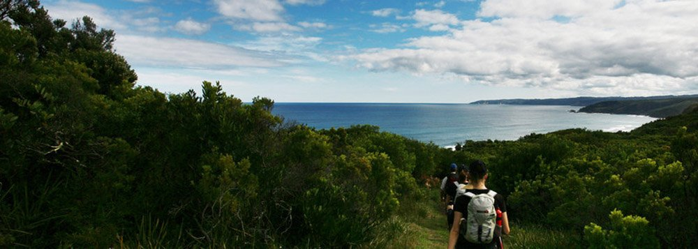 3 Day Great Ocean walk