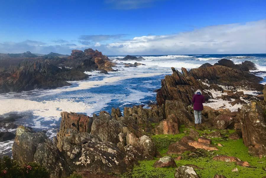 Tarkine walk Tasmania