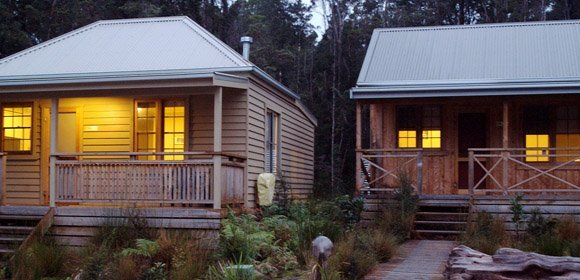 Tarkine Wilderness Walk