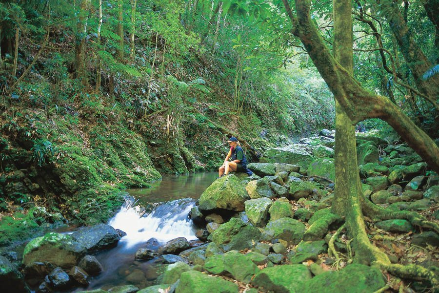 3 day Gold Coast Hinterland Traverse Walk