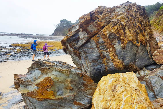 Yuraygir-Coastal-walk-NSW