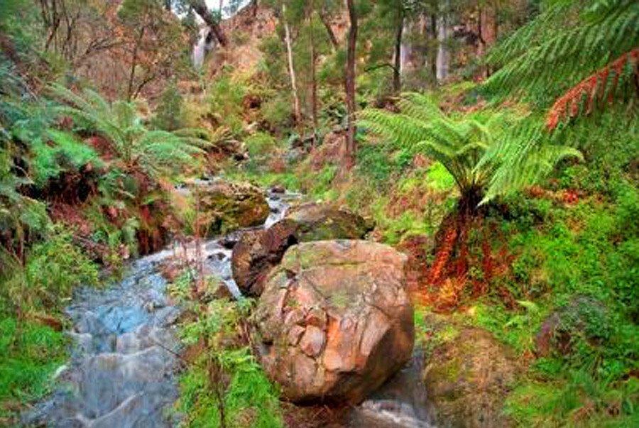 3 Day Goldfields Track walk