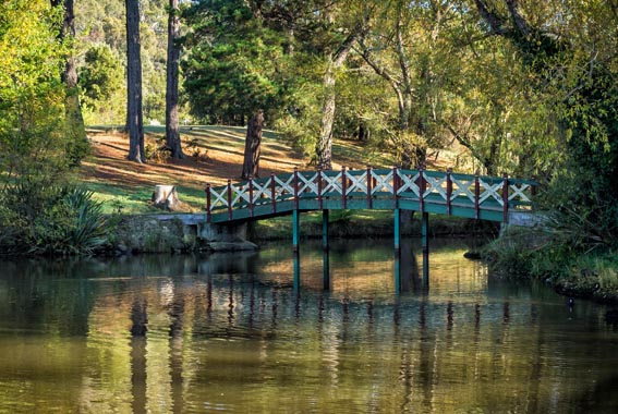 Goldfields-Track-walk-Victoria