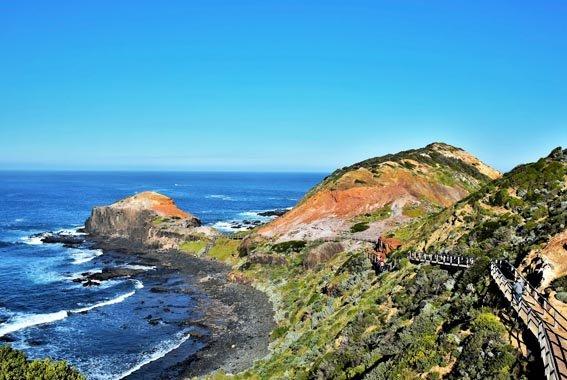 6 Day Mornington Peninsula, Phillip & French Islands Walk