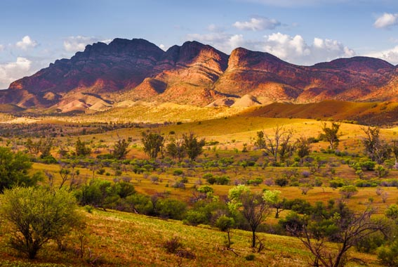 Flinders-Ranges-walk
