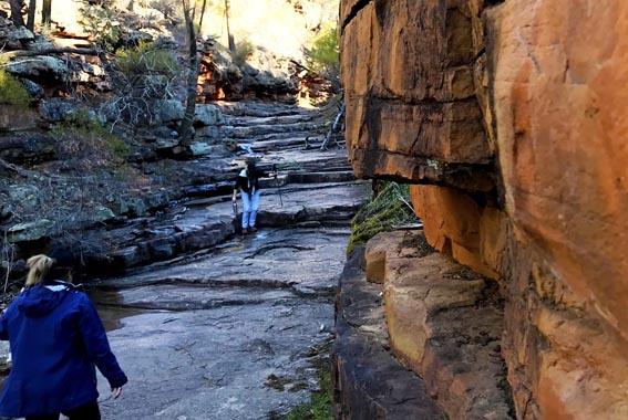 Flinders-Ranges-walk