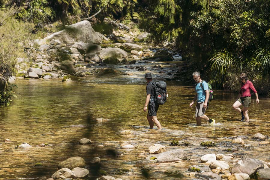 4 Day Abel Tasman Coast Track walk