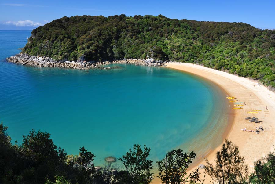 6 Day Queen Charlotte & Abel Tasman Coast Track walk