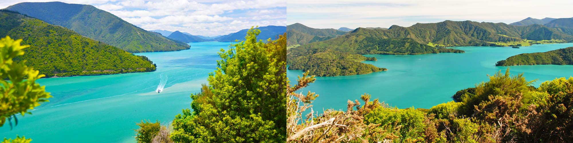 6 Day Best of the Queen Charlotte & Abel Tasman Track walk