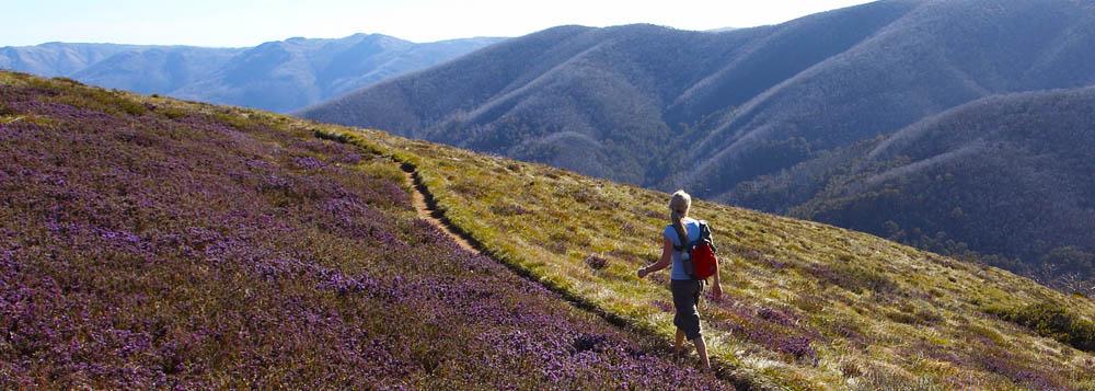 4 Day Alpine walk