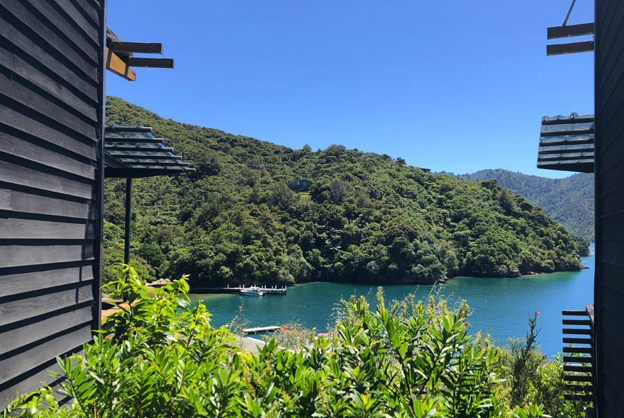 3 Day Best of the Queen Charlotte Track walk