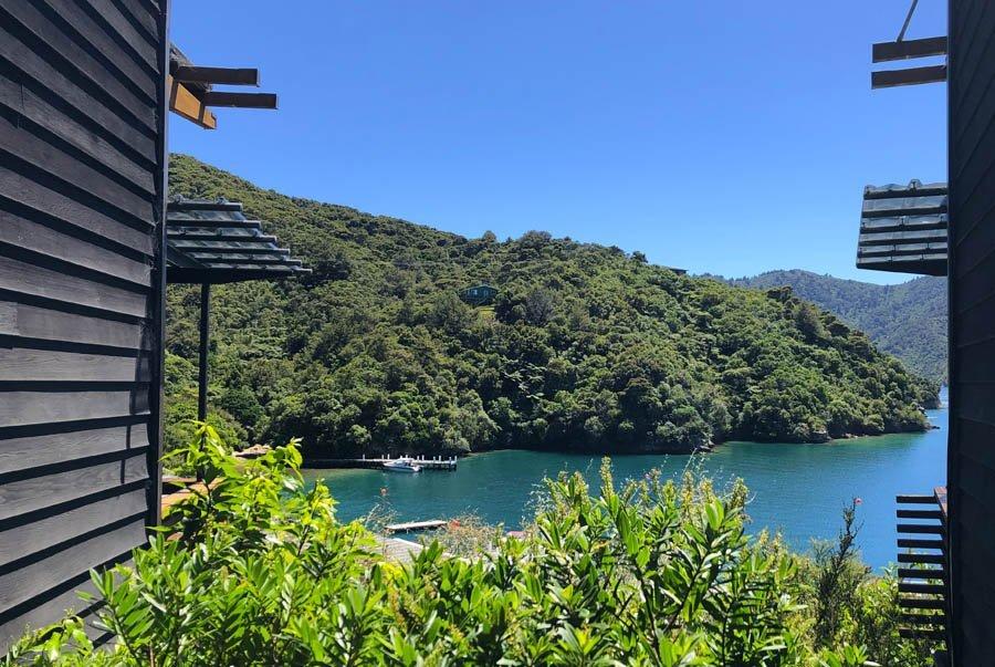 6 Day Best of the Queen Charlotte & Abel Tasman Track walk