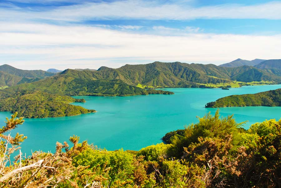 3 day Queen Charlotte Sound Walk