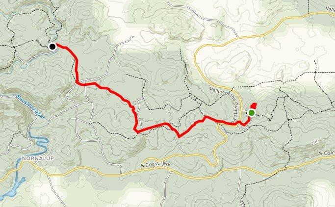 Bibbulmun Track Guided Pack Free Walk Day 2