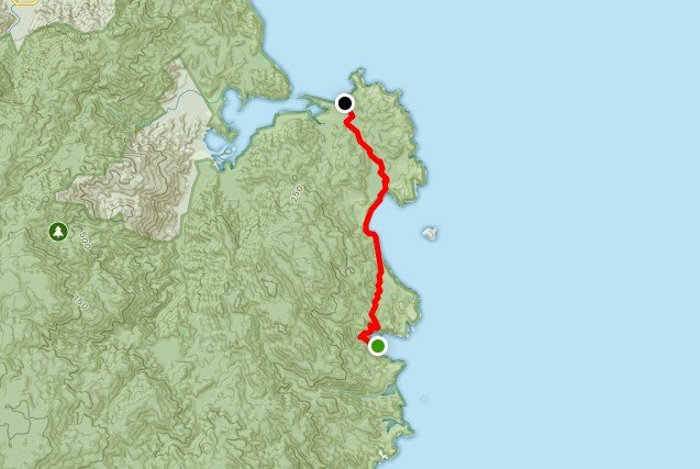 Abel Tasman Pack-Free Guided Walk - Day 3