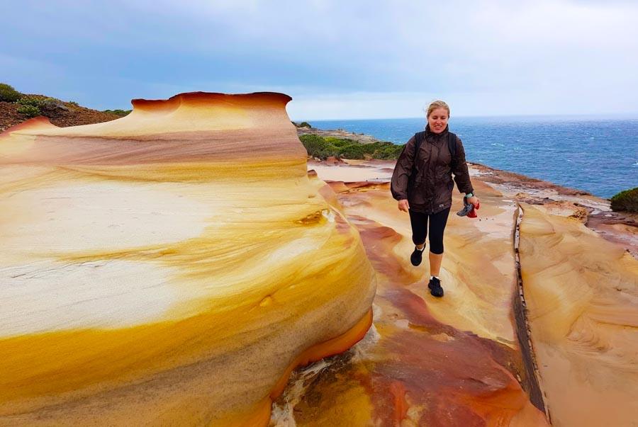 Sydney Royal National Park Coast Walk