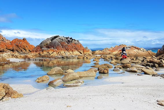 Self Guided Bay of Fires Walk