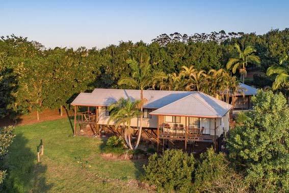 Byron-Hinterland-guided-walk-NSW-Villas