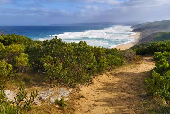 Self Guided Great Ocean 5 Day Walk