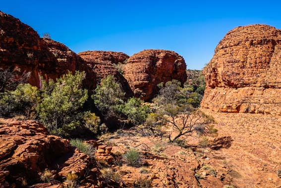 Larapinta & Red Centre Walk