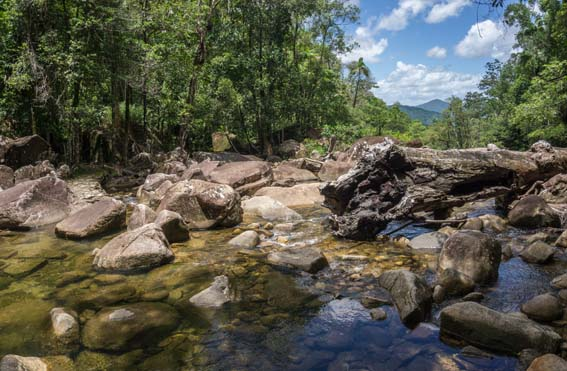 5 day / 5 night Mackay Highlands and Cape Hillsbourough National Park
