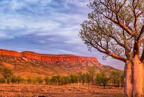 5 Day Kimberley Explorer
