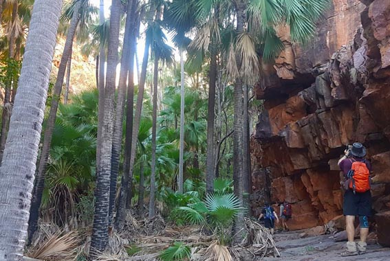 10 Day Kimberley to Broome Explorer – V3
